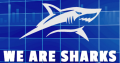 Market Sharks – Premium Forex Training