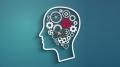 Damon Verial – Risk Management and Trading Psychology for Investors