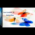 Option Elements - Iron Condors And Butterflies Class